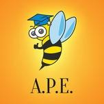 A.P.E. MUSICA